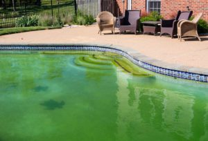 Pool Closing Tips To Allow For Easy Opening Next Year