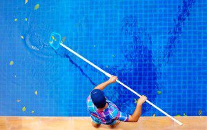 36455544 - young adult man, personnel cleaning the pool from leaves