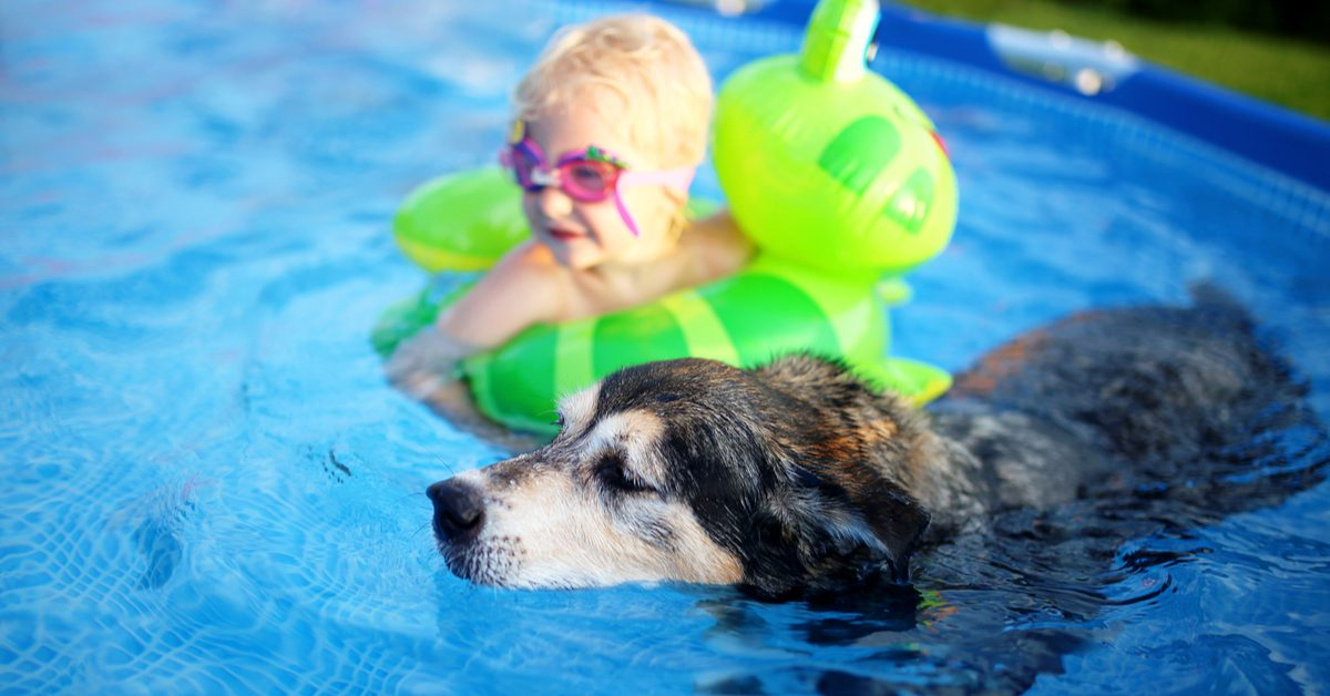 Inground and Above Ground Pools in Lehigh Valley PA