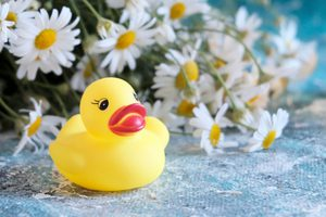 Pool and spa chemicals, rubber duckies